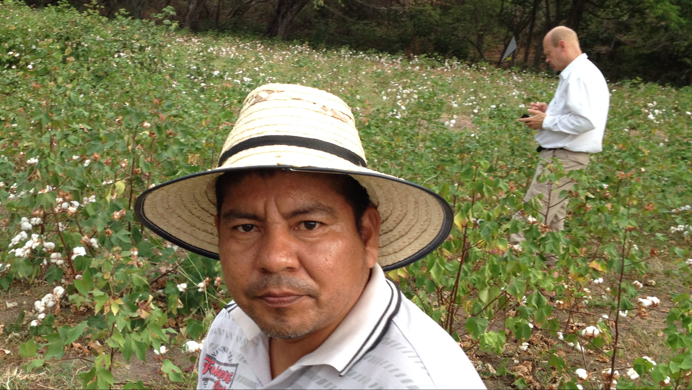 Inspecting organic cotton field, Natagaima, Colombia 2015