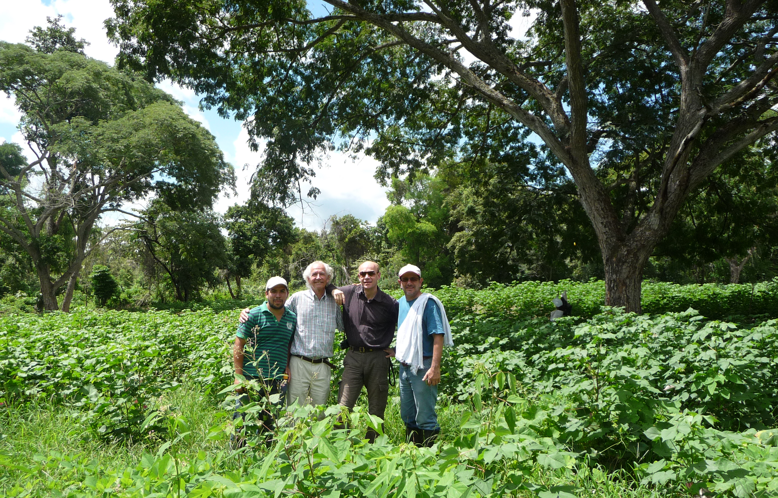 Visiting PTP organic cotton cropping tests with Jens Soth, Helvetas, Alvarado, Colombia 2013